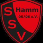Abteilungsleiter Fußball-Jugend verlässt den SSV Hamm
